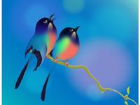 Spring Birds illustration