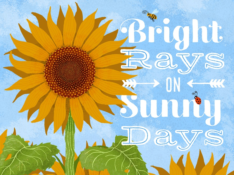 Sunny Days typography sunflowers flower summer childrens childrens illustration illustration