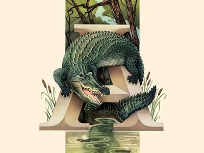 Alligator, Living Lettering alligator swamp environmental typography lettering nature animals alphabet illustration
