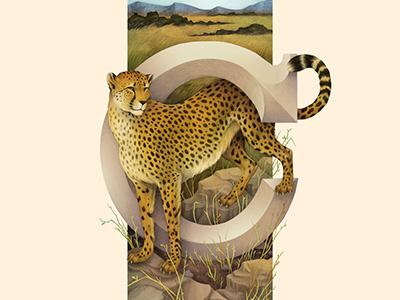 Cheetah, Living Lettering letter c savannah typography illustration environmental lettering alphabet cheetah
