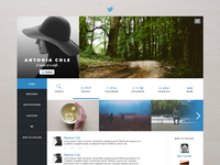 Twitter Layout Redesign