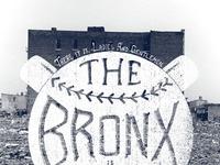 The bronx burning
