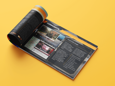 Brochure Design branding print design brochure