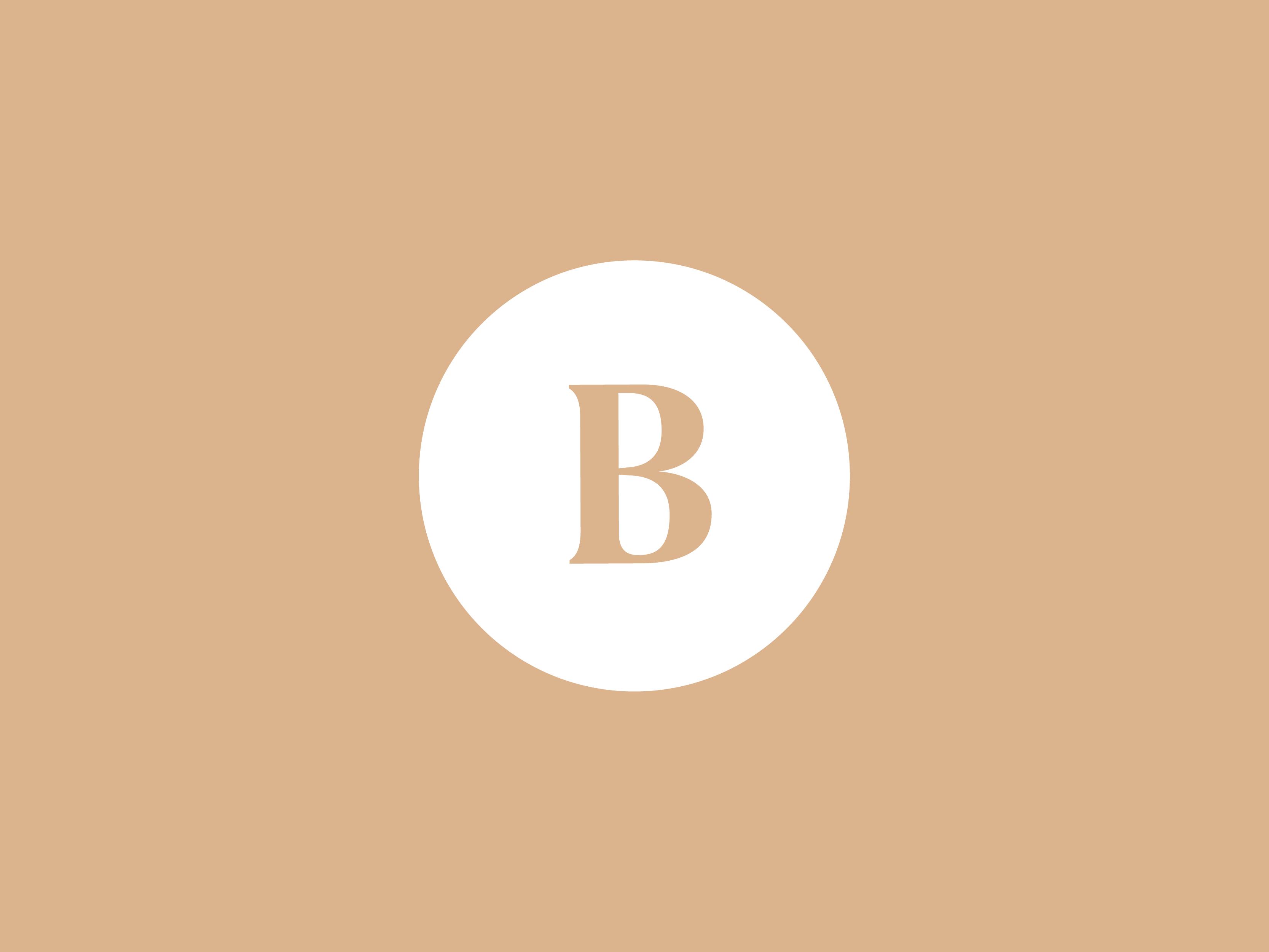 Boundless branding 03