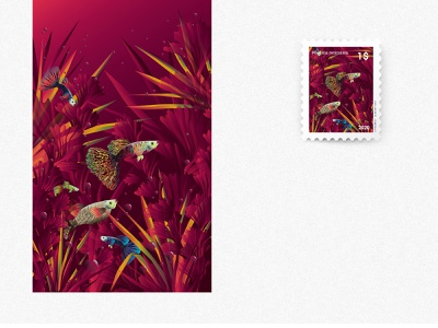 Freshwater Fish Canvas Illustration - Guppy fish graphic art poecilia design poecilia reticulata mail sticker freshwater illustration interior fish fish design guppy canvas guppy illustration water plants aquarium illustrations aquarium fish