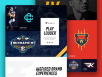 Forte Website Design