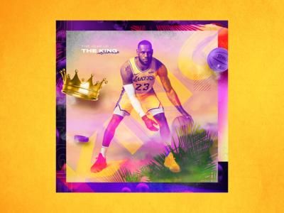 LeBron James - The King of the Revenge