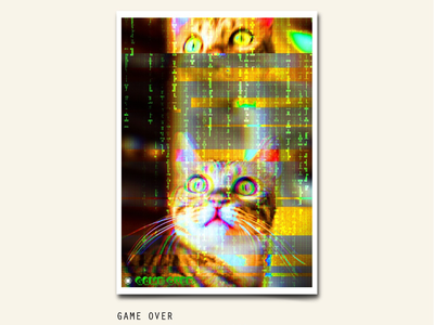 116/365 GAMEOVER character cat error digital glitch project365 abstract poster art