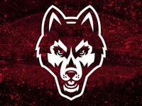 SCSU Huskies Rebrand Concept