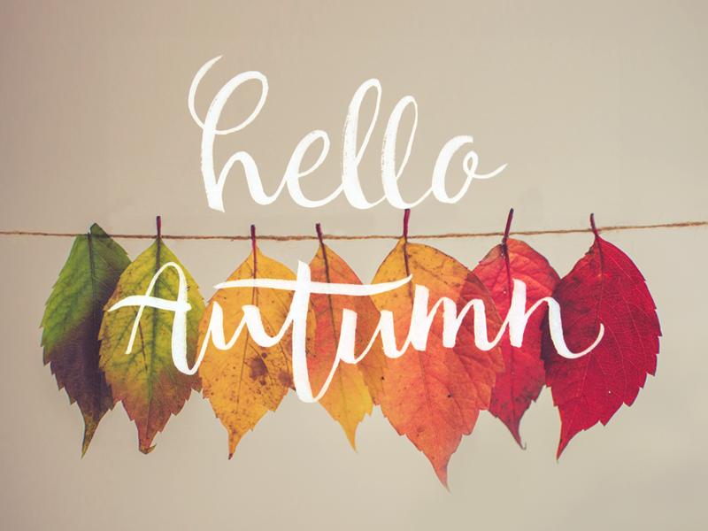https://cdn.dribbble.com/users/194684/screenshots/3087398/hello-autumn.png
