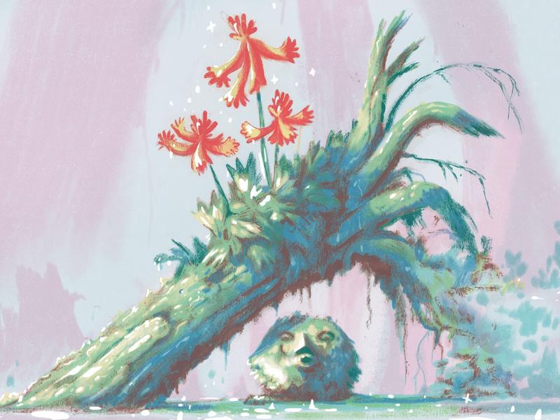 Flower Bringer nature illustration forest stone spring