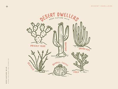 Desert Dwellers cactus wild plants botanical cholla organ pipe prickly pear saguaro cacti desert procreate outdoors nature design illustration