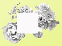 Bouquet Collage
