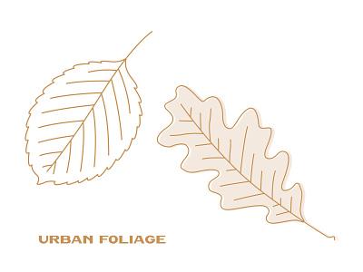 Urban Foliage Illustration set illustration vector urban nature illustrations clipart design