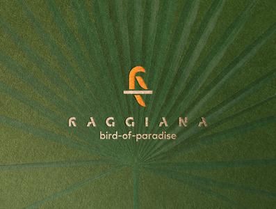 BIRD branding icon design logo