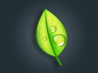 Leaf Drop. Adobe Illustrator Tutorial illustration vector eco bio leaves green nature drop leaf