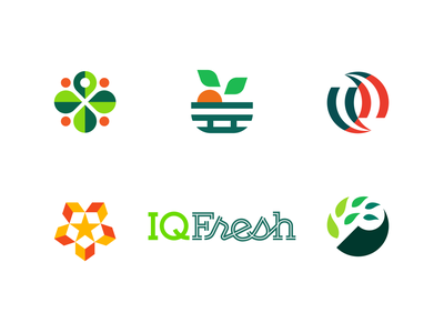 IQFresh Identity Presentation typography fruit arrows box leaf palette color brand road plant produce icon logotype wordmark branding logo