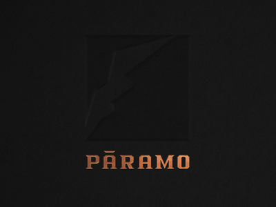 Logo_ Páramo brand branding icon handmadetype typeface logodesign logotype coffee