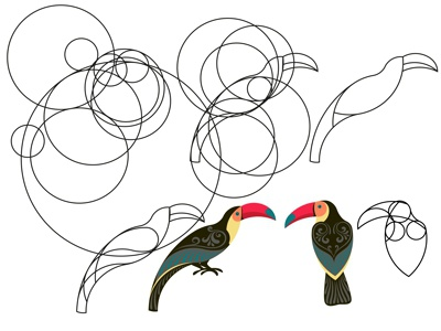 Sketches of toucans.