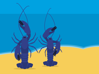 Festival by the Sea illustration lobster