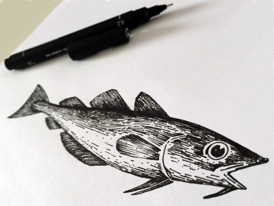 Cod illustration line pen ink illustrator draw drawing illustration fishy fish
