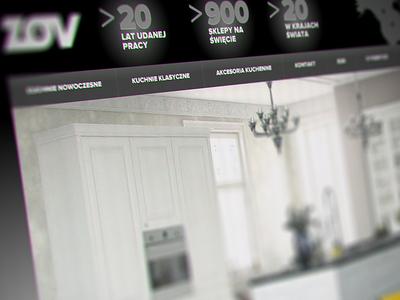 New website design for ZOV Poland