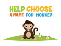 Help choose a name for monkey