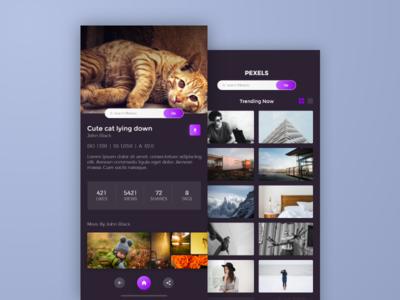 Pexels iOS App