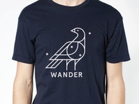 Wander T 2nd Edition