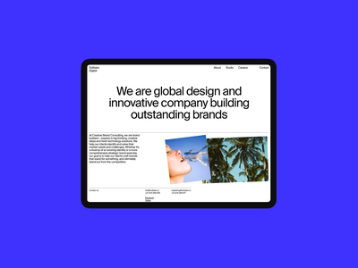Solitaire Digital swiss header grid website whitespace design minimal clean layout typography