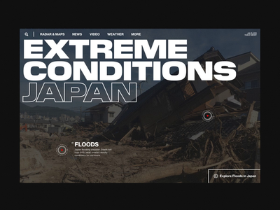 Natural Disasters grid inteface interactive web design website layout typography