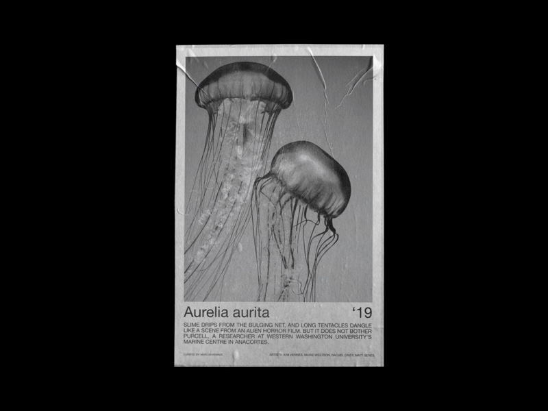 Aurelia Aurita Exhibition Poster photography design typography art poster graphic design graphic typography