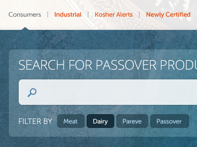Search for Passover Products search filters ui