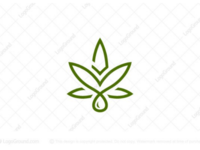 Eagle Cannabis Logo