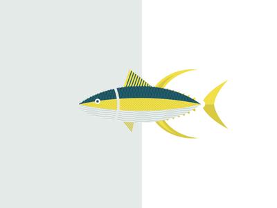 Yellowfin Tuna / Hamachi Illustration