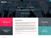 Website Baruch NY College