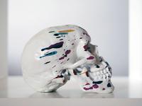 Skullpture Art