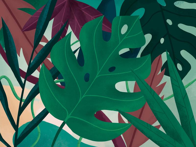 Leaves illustration procreate monstera jungle leaves nudds