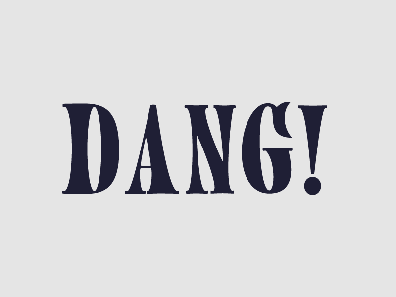 Dang Type 12 woodblock type typography type serif dang custom typography