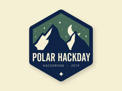 POLAR NIGHT hackday polar night night polar minimal nature badge branding flat thick lines logo design logo vector illustration