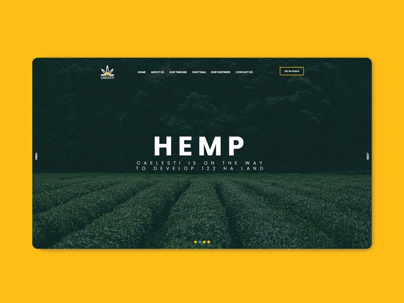 Caelesti Website branding web ui ux illustration typography photoshop logo website designit webdesign design codeit