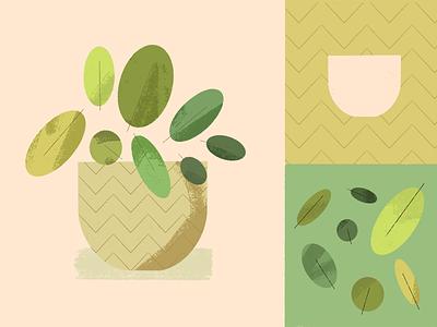 Plant! pot green texture pattern leaf procreate illustration plant