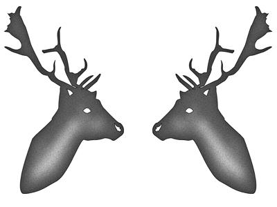 Trying out Sketch (Deer) deer sketch