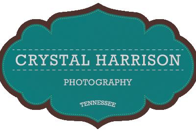Photography Logo stitched