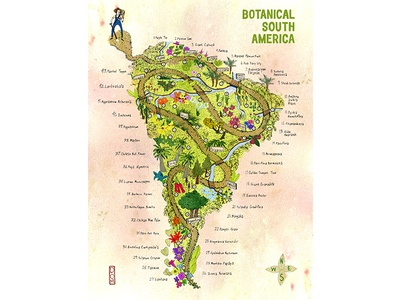 Botanical South America - Illustrated Map