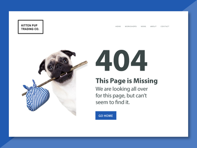 Lost Pup 404 Page web ux ui store photo material interface flat e-commerce background 404