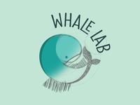 Whale Lab Graphic & Web Design Studio | New Brand