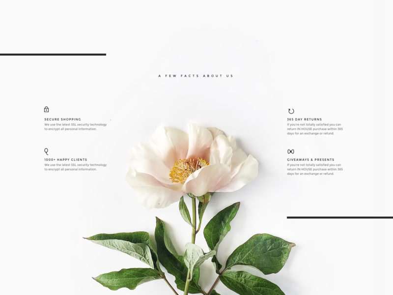 Ecommerce features stripes lines shopify theme minimal layout ui kit ui delicate soft features store ecommerce shop floral