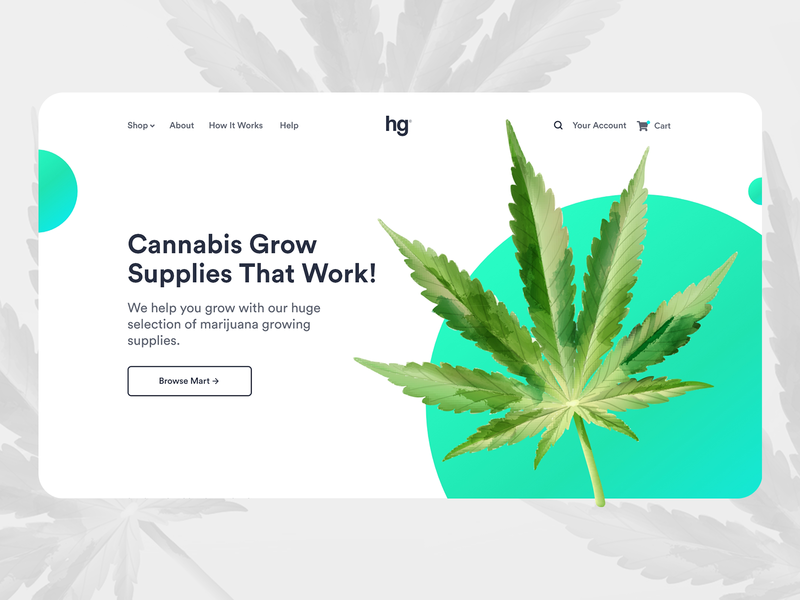 Cannabis Farm Web UI Design brand design 2020 userinterface cannabis design branding adobexd ux design adobe ui