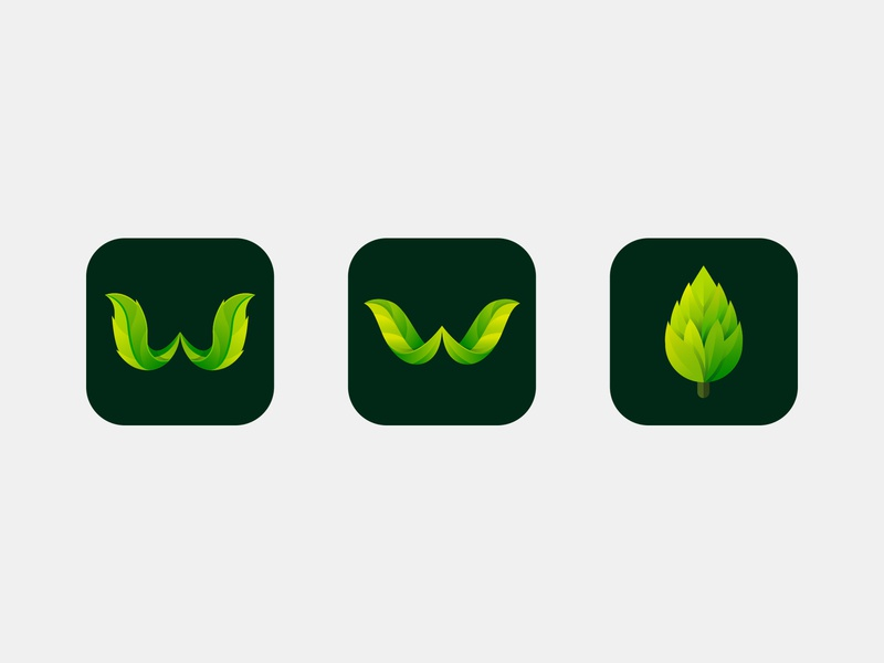 tree wallpaper app icon concept app icon leaf w wallpaper tree concept icon icons color art design